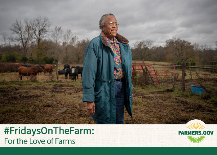 In this week's #FridaysOnTheFarm, we travel to Slick, Oklahoma, where 79-year-old Patricia Crenshaw has owned and operated her late father's cattle operation for the past 18 years.