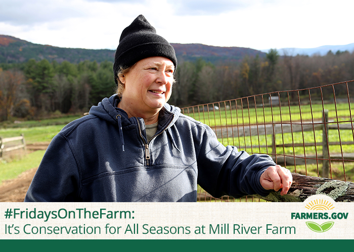 This week we travel to New Marlborough, Massachusetts, where Jan Johnson has taken on a suite of conservation projects to strengthen her 32-acre organic farm. Steep land and a short growing season? Jan has tackled both.