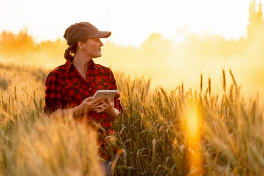 Female stand in field holding tablet looking into distance