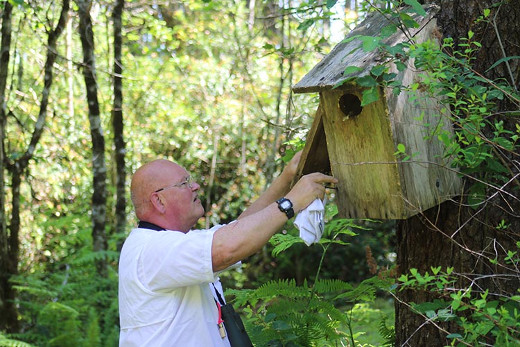 Mark works on a nesting box on his property.