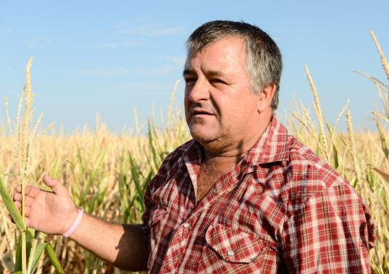 Kenneth McAlister is a nationally recognized soil health champion from Electra, Texas, who has used no-till and cover crops to diversify his operation and strengthen his bottom line.