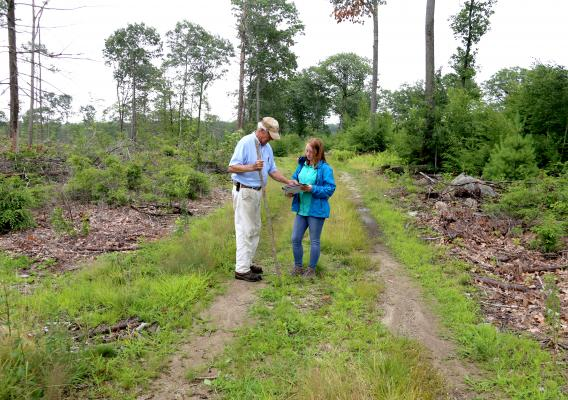 Bill and an NRCS conservationist walk on his private forest