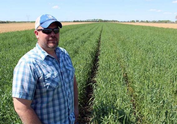 "Noah Seim's rye cover crop helped serve as a kind of ""ark,"" protecting his field during the heavy flooding in Nebraska this year."