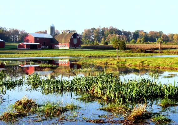 Barn overlooking wetlands