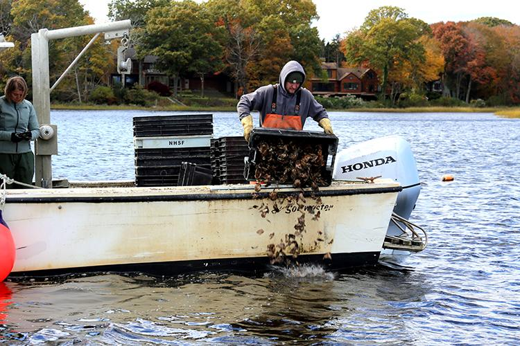A man dumps oyster shell from a boat.