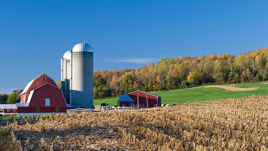 Beautiful image of farm and land.