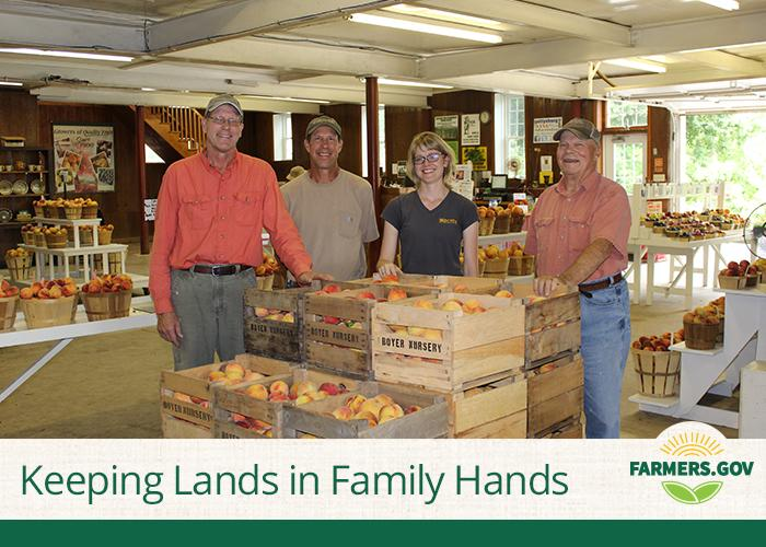 Nestled in the hills of Adams County, Pennsylvania lies a fifth-generation family farm, Boyer Nurseries & Orchards. Since 1900, the nursery has been a family business and an important agricultural landscape in the county.