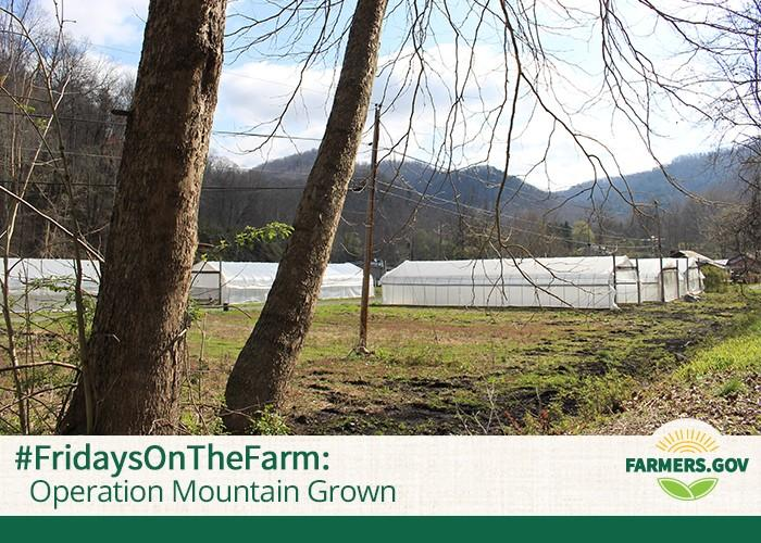 """Jason Tartt and Sylvester """"Sky"""" Edwards are two military veterans who are dedicated to reviving agriculture in McDowell County, West Virginia."""