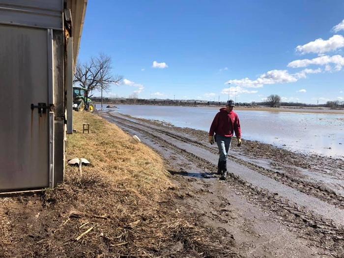 Flood damage on Bill Luckey Farm in Columbus, Nebraska. USDA photo by Bill Luckey.