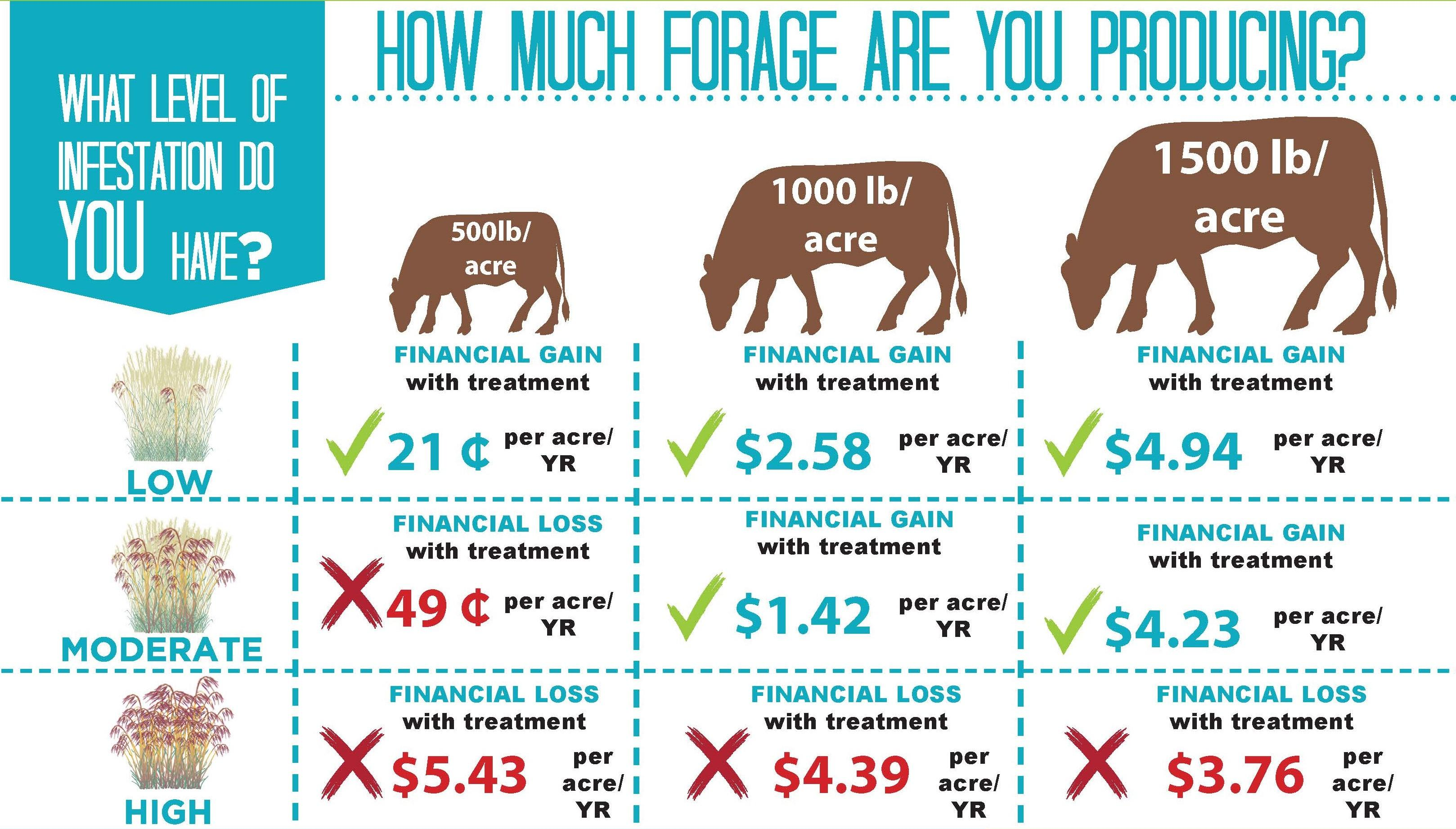 Knowing when to treat and the costs and benefits involved is key to making decisions for your land.