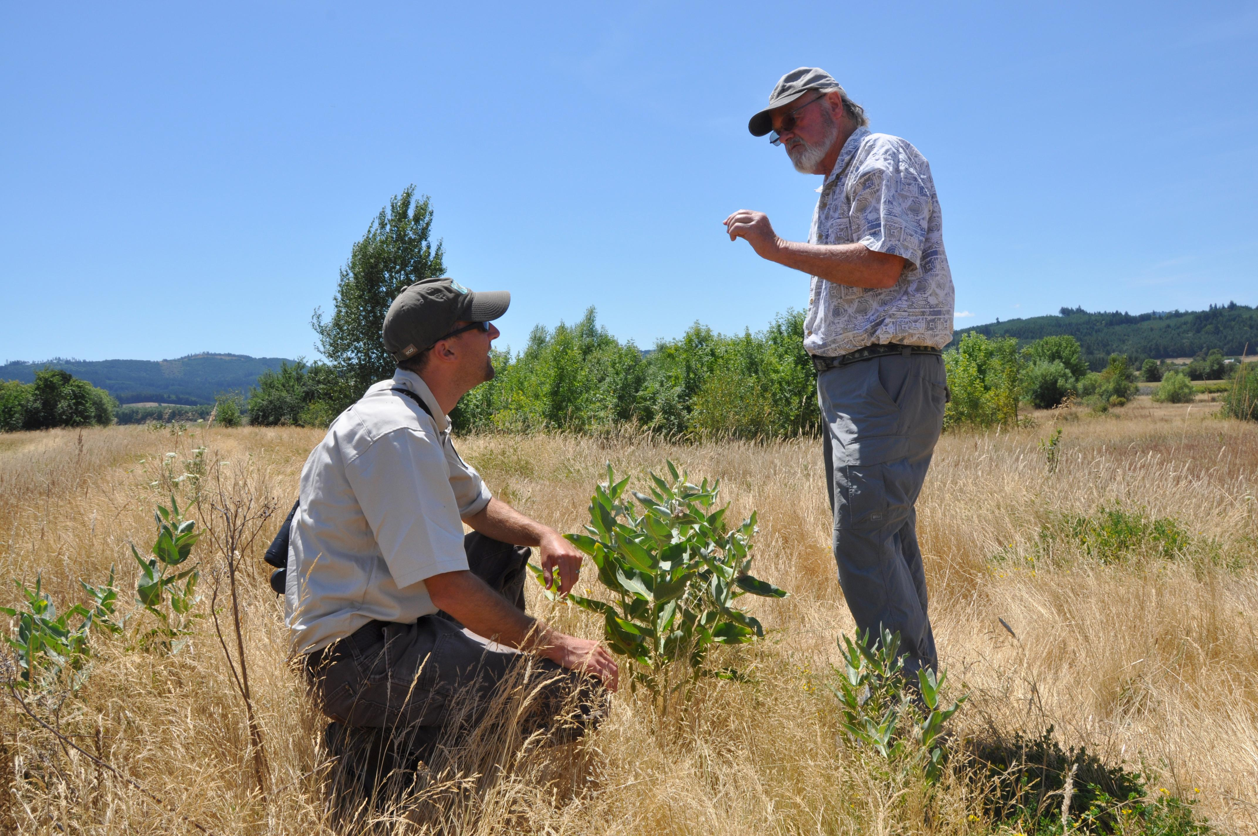 USDA has a wide variety of options for landowners wanting to improve pollinator habitat on their land while improving the bottom line of their operation.
