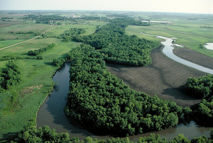 Aerial view of riparian forest buffers.