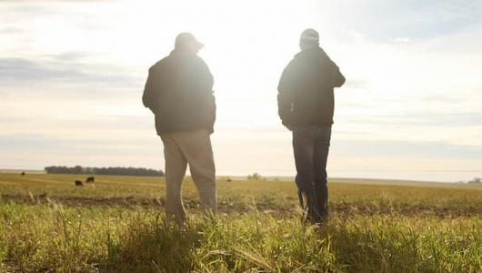 Two farmers walk in a field.