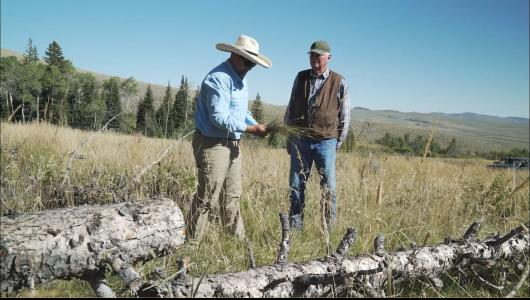 NRCS employee and rancher examining brush