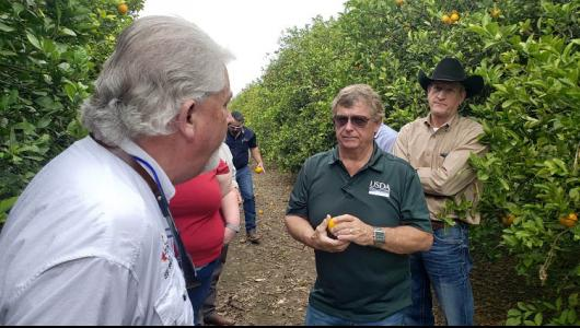 RMA Administrator Martin Barbre talks to five male and one female farmers in an orange orchard with trees surrounding them.
