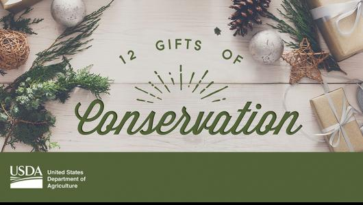 12 Gifts of Conservation image