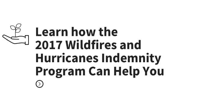 Wildfires and Indemnity Program